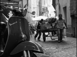 Le Borsalino - Auray
